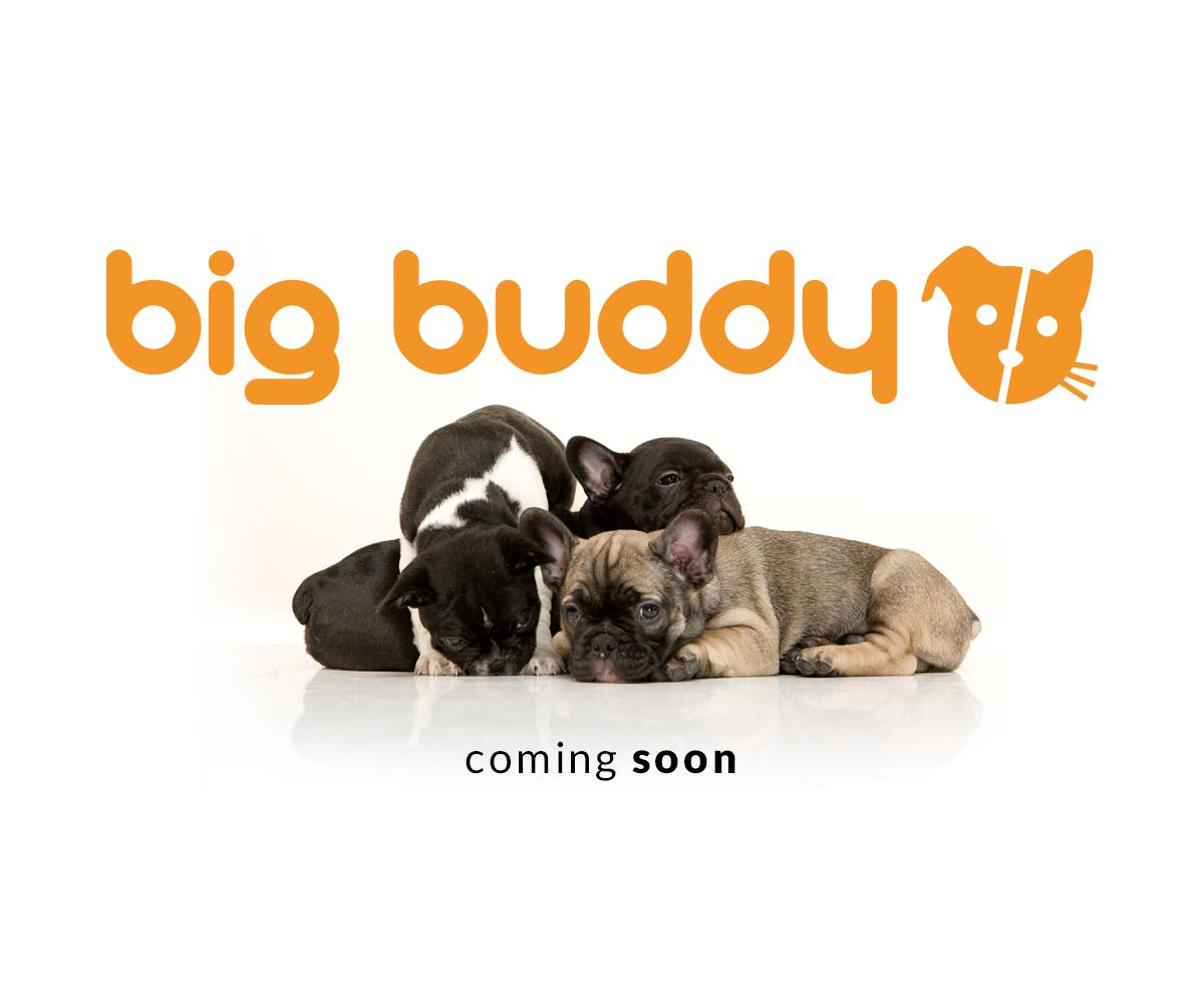 big buddy coming soon